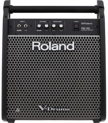 Roland PM 10